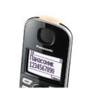 Panasonic-KX-TGE510RUS-5